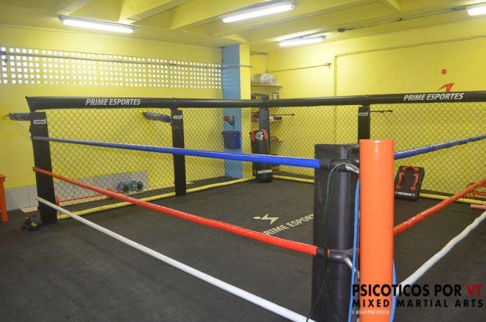 Octoring ,adaptação para treinamentos tanto nas grades do cage quanto nas cordas do ring